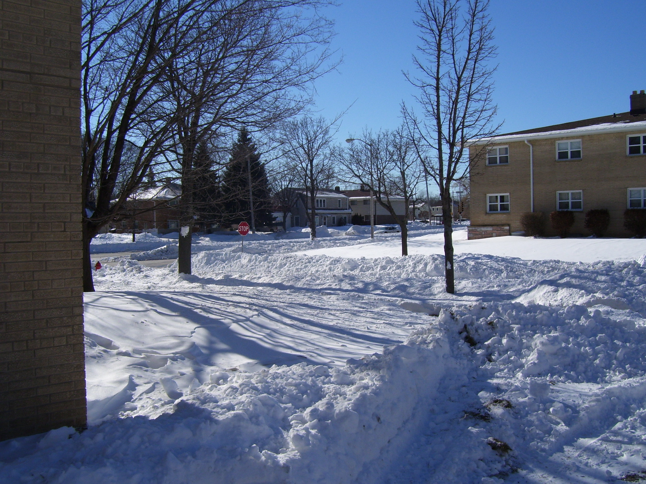 blizzard 1 (2011)